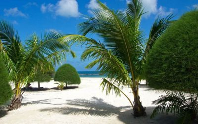 malibu beach koh phangan